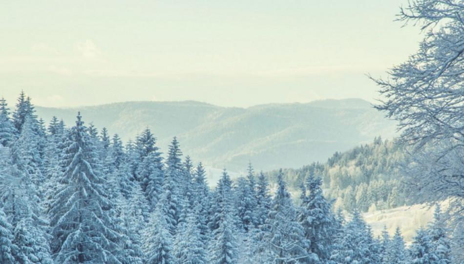 Winter Wonderland in Krynica Zdrój